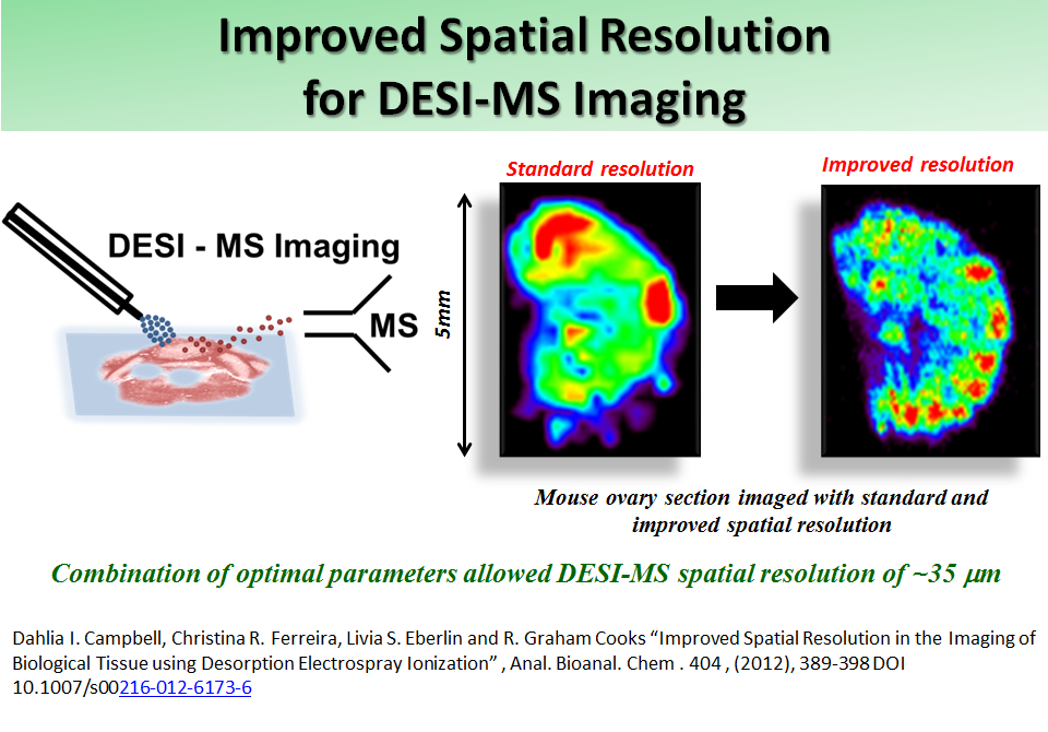 Improved Spatial Resolution for DESI-MS Imaging