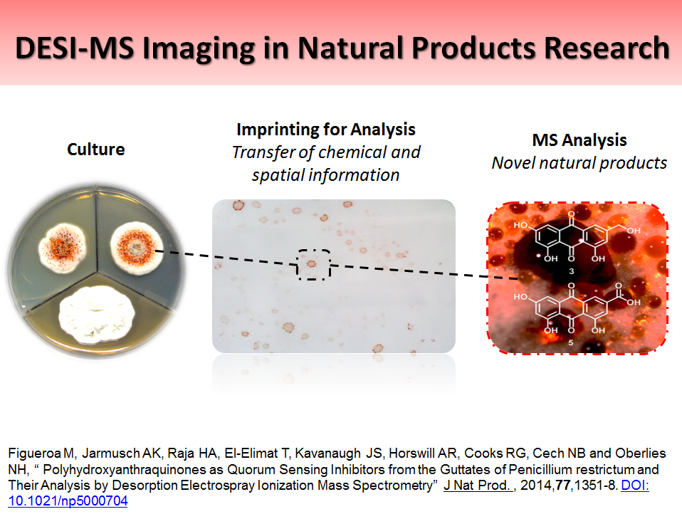 DESI-MS Imaging in Natural Products Research