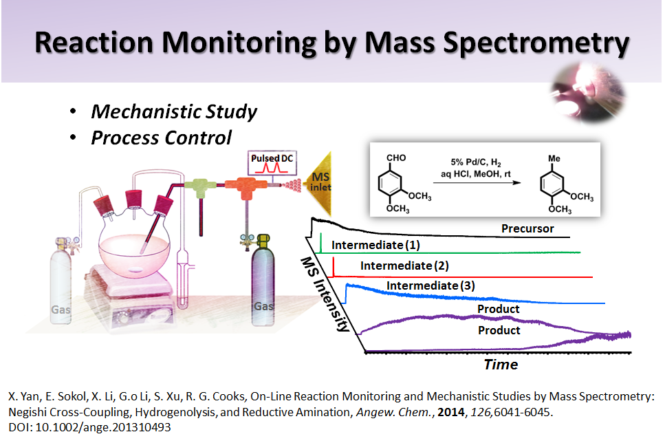 Reaction Monitoring by Mass Spectrometry