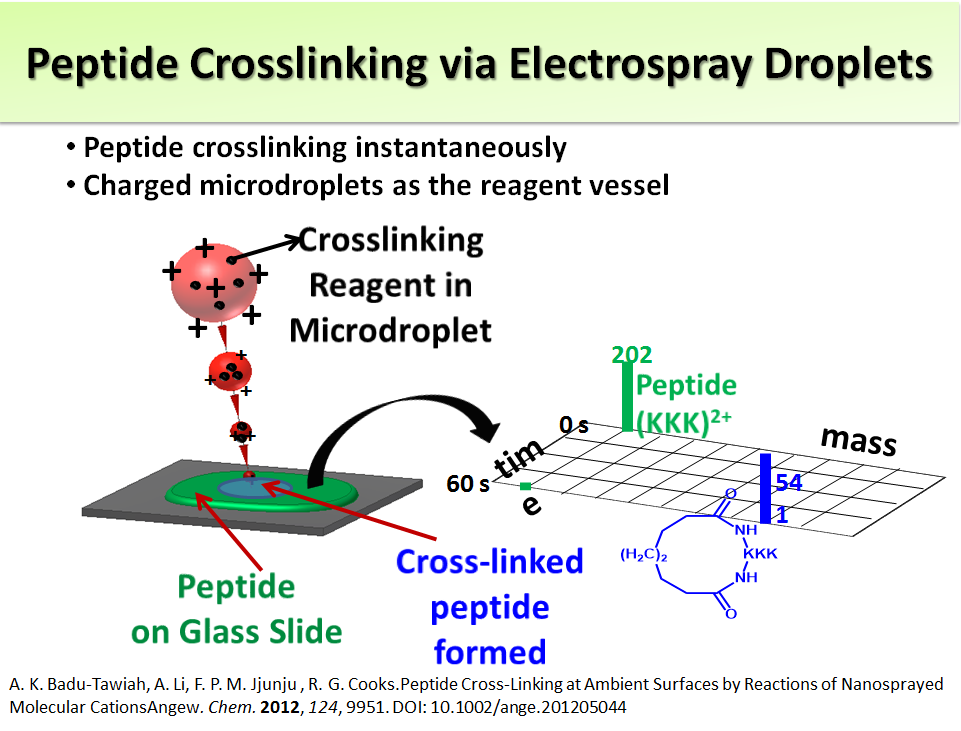 Peptide Crosslinking via Electrospray Droplets
